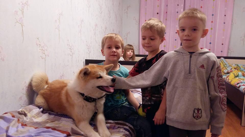 Еще одно пополнение в семействе - четвероногий домашний любимец