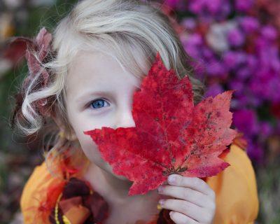 Изображение - Справка о доходах для усыновления girl-2607176_1920-400x320